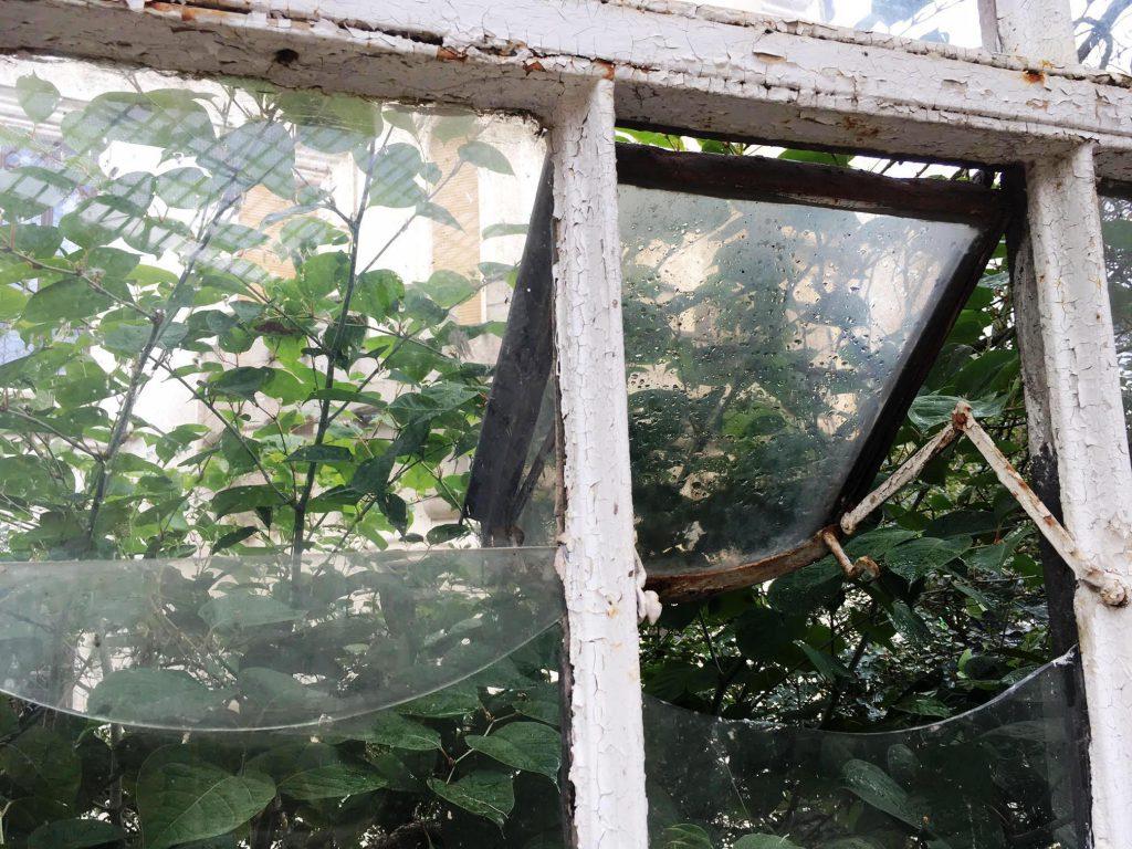 אריחי זכוכית- גינת החורף בטירת חלובוקה