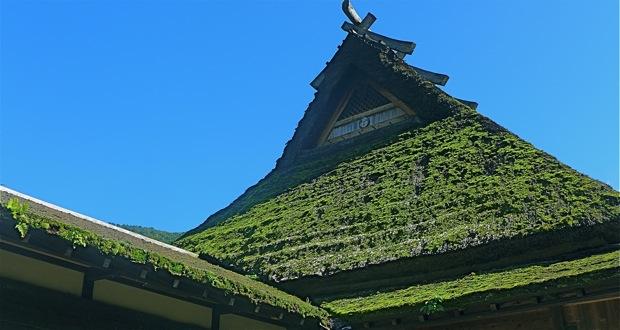 גג מסורתי של בית כפר