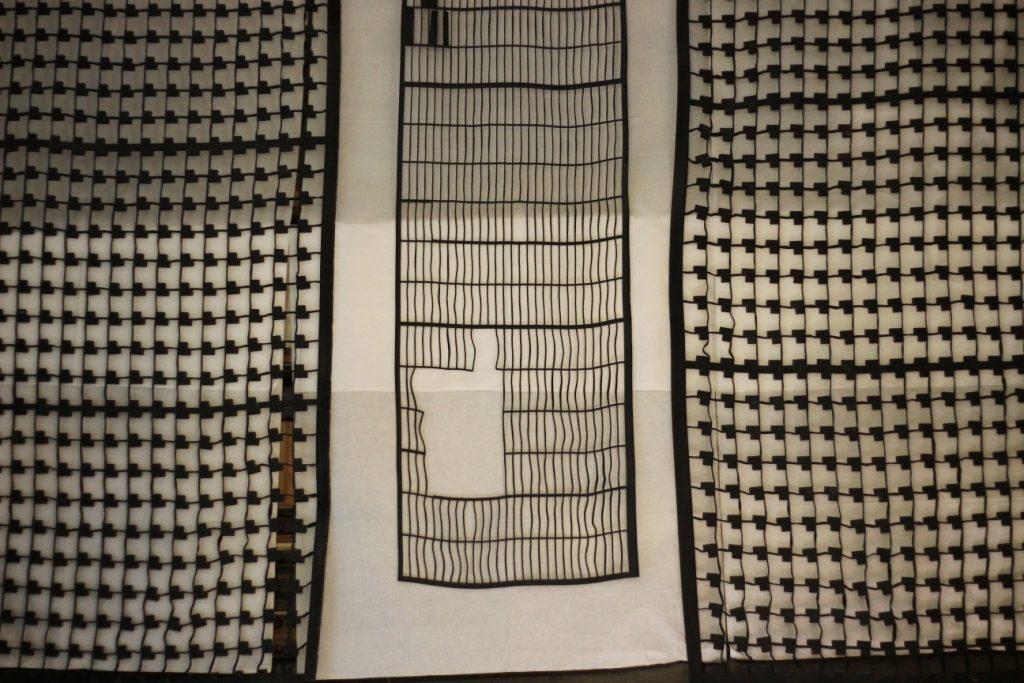 רשתות שחורות תלויות בסטודיו של פאולה