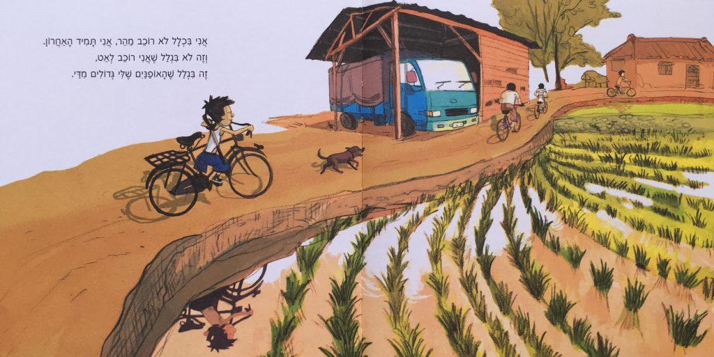 ילד רוכב על אפניים בשדה אורז